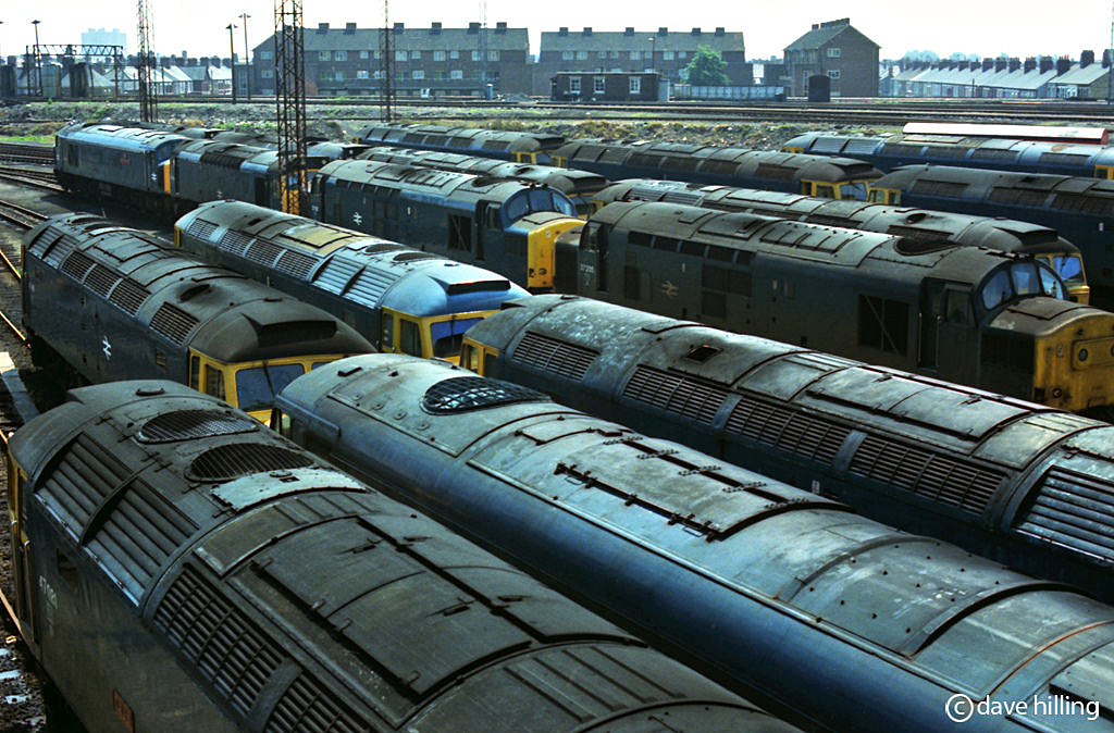 Cardiff Canton Sheds